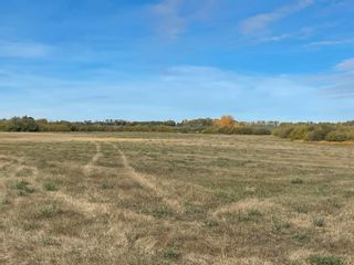 Photo 3: RR 230 Twp 492: Rural Leduc County Rural Land/Vacant Lot for sale : MLS®# E4263882
