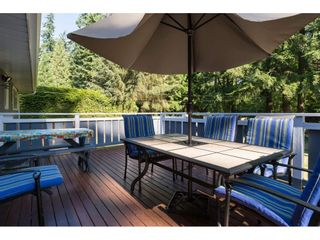 """Photo 14: 17725 20 Avenue in Surrey: Hazelmere House for sale in """"NCP 4"""" (South Surrey White Rock)  : MLS®# R2184388"""