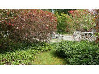 "Photo 16: 111 10082 132ND Street in Surrey: Cedar Hills Condo for sale in ""Melrose Court"" (North Surrey)  : MLS®# F1442265"