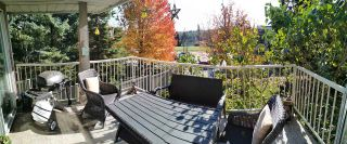 """Photo 39: 232 13900 HYLAND Road in Surrey: East Newton Townhouse for sale in """"Hyland Grove"""" : MLS®# R2519167"""