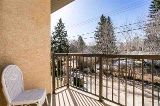 Photo 16: 11 ST VITAL Avenue: St. Albert House Half Duplex for sale : MLS®# E4233836