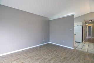 Photo 6: 16044 38 street NW in Edmonton: Zone 03 House for sale : MLS®# E4248402
