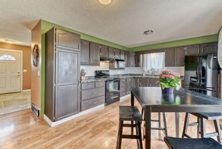 Photo 26: 424 Cole Crescent: Carseland Detached for sale : MLS®# A1106001