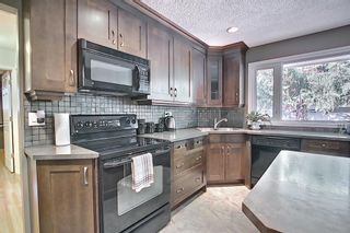 Photo 14: 9623 19 Street SW in Calgary: Palliser Detached for sale : MLS®# A1097991
