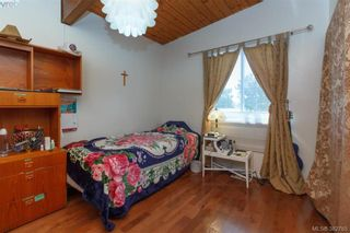 Photo 9: 4211 Belvedere Rd in VICTORIA: SE Lake Hill House for sale (Saanich East)  : MLS®# 769195