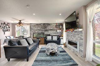 Photo 15: 6511 24 Avenue NE in Calgary: Pineridge Detached for sale : MLS®# A1152283