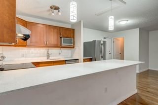Photo 19: 404 718 12 Avenue SW in Calgary: Beltline Apartment for sale : MLS®# A1049992