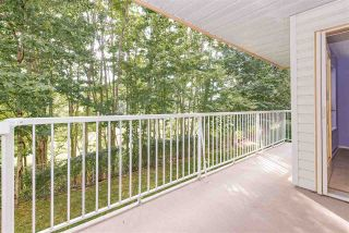 Photo 4: 106 20600 53A AVENUE in Langley: Langley City Condo for sale : MLS®# R2398486