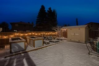 Photo 33: 24 MCKERRELL Crescent SE in Calgary: McKenzie Lake Detached for sale : MLS®# A1092073