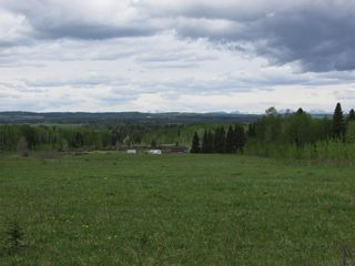 Photo 10: 103, 5227 TWP RD 320: Rural Mountain View County Land for sale : MLS®# C4299948