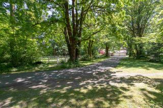Photo 36: 1240 JUDD Road in Squamish: Brackendale House for sale : MLS®# R2444989