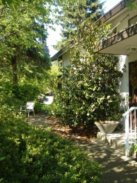 Photo 9: Photos: 2142 ST ANDREWS AV in North Vancouver: Central Lonsdale House for sale : MLS®# V592518