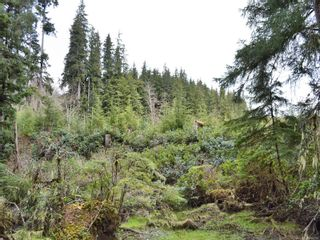 Photo 35: W1/2 SW&NW1/4 Quatsino Sound in : NI Port Hardy Land for sale (North Island)  : MLS®# 866764