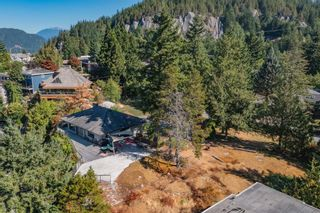 Photo 12: 38287 VISTA Crescent in Squamish: Hospital Hill Land Commercial for sale : MLS®# C8040256