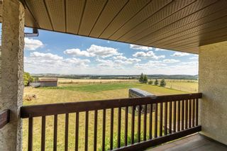 Photo 4: 19 26534 township road 384: Rural Red Deer County Detached for sale : MLS®# A1138392
