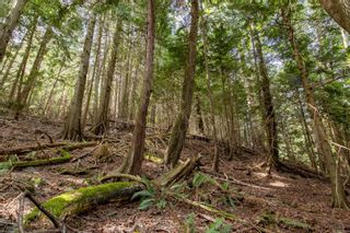 Photo 6: 8817 Canal Rd in : GI Pender Island Land for sale (Gulf Islands)  : MLS®# 874545