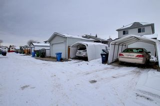 Photo 41: 47 Appleburn Close SE in Calgary: Applewood Park Detached for sale : MLS®# A1049300