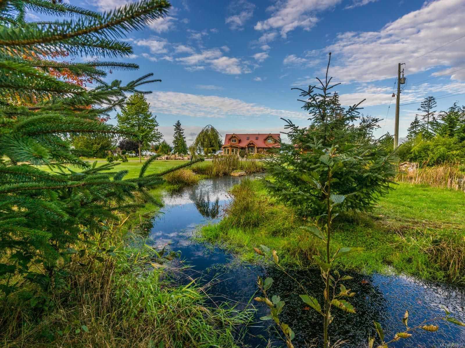 Photo 67: Photos: 6030 MINE Rd in : NI Port McNeill House for sale (North Island)  : MLS®# 858012