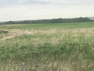 Photo 9: TWP 580 Rg Rd 240 Sturgeon County: Rural Sturgeon County Rural Land/Vacant Lot for sale : MLS®# E4248027