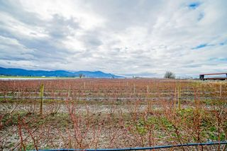 Photo 35: 35826 SOUTH PARALLEL Road in Abbotsford: Sumas Prairie Agri-Business for sale : MLS®# C8035413