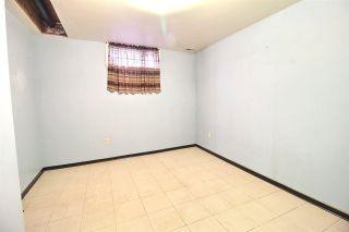 Photo 20:  in Edmonton: Zone 18 House for sale : MLS®# E4234696