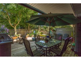"""Photo 20: 43 18181 68 Avenue in Surrey: Cloverdale BC Townhouse for sale in """"THE MAGNOLIA"""" (Cloverdale)  : MLS®# R2191663"""