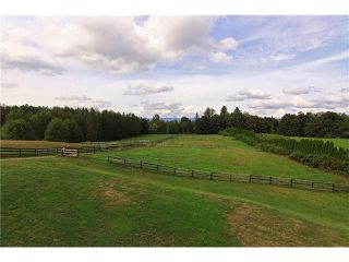 Photo 16: 30041 HARRIS Road in Abbotsford: Bradner House for sale : MLS®# F1447614