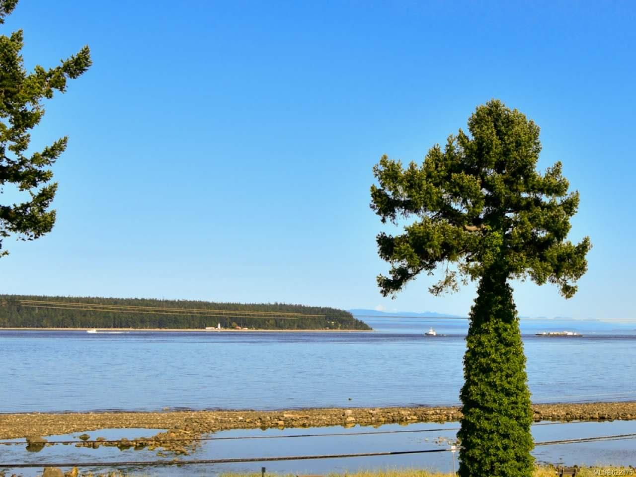 Main Photo: 405A 650 S Island Hwy in CAMPBELL RIVER: CR Campbell River Central Condo for sale (Campbell River)  : MLS®# 822875