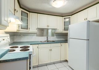 Photo 14: 3135 Rae Crescent SE in Calgary: Albert Park/Radisson Heights Detached for sale : MLS®# A1139656