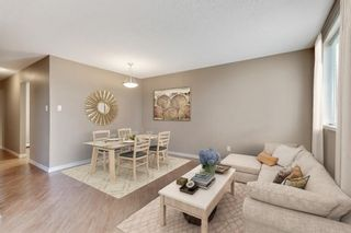 Photo 16: 2815 11 Avenue SE in Calgary: Albert Park/Radisson Heights Detached for sale : MLS®# A1149863