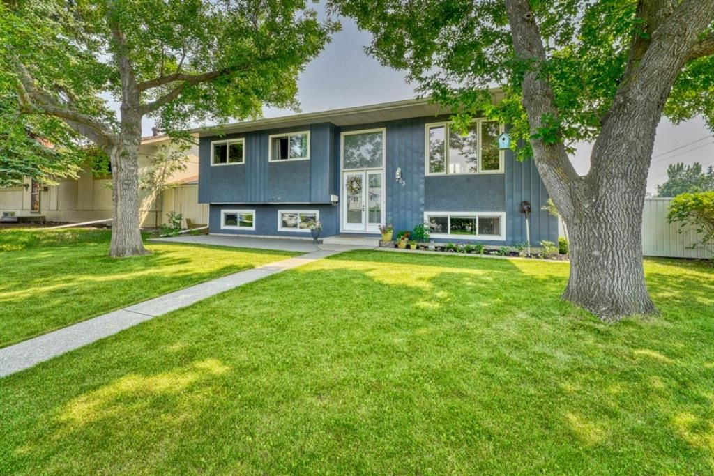 Main Photo: 703 Alderwood Place SE in Calgary: Acadia Detached for sale : MLS®# A1131581