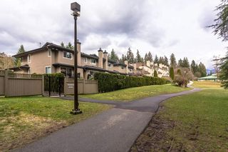 "Photo 26: 3918 INDIAN RIVER Drive in North Vancouver: Indian River Townhouse for sale in ""HIGHGATE TERRACE"" : MLS®# R2562402"