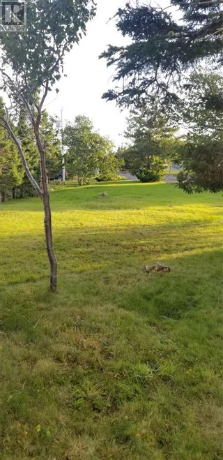 Photo 2: 4 Country Road in Paradise: Vacant Land for sale : MLS®# 1237462