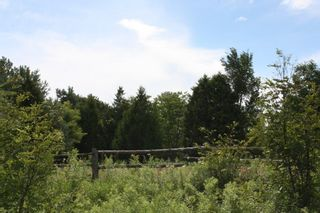 Photo 8: 11358 County Road 2 Rd in Grafton: Land Only for sale : MLS®# 511350277