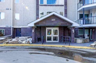 Photo 32: 204 237 YOUVILLE Drive E in Edmonton: Zone 29 Condo for sale : MLS®# E4237985