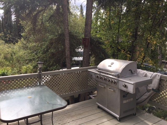 """Photo 12: Photos: 4371 BLACKWATER Road in Quesnel: Bouchie Lake House for sale in """"BLACKWATER - NAZKO"""" (Quesnel (Zone 28))  : MLS®# R2402787"""