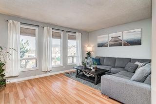 Photo 13: 508 Mckinnon Drive NE in Calgary: Mayland Heights Detached for sale : MLS®# A1154496