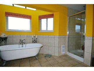 Photo 15: 20981 132ND Avenue in Maple Ridge: Northwest Maple Ridge House for sale : MLS®# V1116009