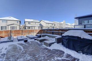Photo 29: 60 CRANBERRY CI SE in Calgary: Cranston Detached for sale : MLS®# C4274885