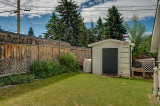 Photo 41: 3204 15 Street NW in Calgary: Collingwood Detached for sale : MLS®# A1124134
