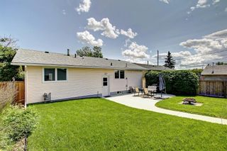 Photo 22: 3111 RAE Crescent SE in Calgary: Albert Park/Radisson Heights Detached for sale : MLS®# C4258934