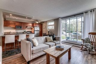 Photo 5: 102 1027 Cameron Avenue SW in Calgary: Lower Mount Royal Apartment for sale : MLS®# A1058522