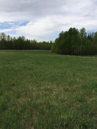 Photo 7: Twp 510 RR 33: Rural Leduc County Rural Land/Vacant Lot for sale : MLS®# E4239253