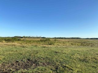 Photo 2: 193036 TWP 534: Rural Lamont County Rural Land/Vacant Lot for sale : MLS®# E4261454
