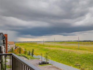 Photo 30: #3413 755 COPPERPOND BV SE in Calgary: Copperfield Condo for sale : MLS®# C4086900