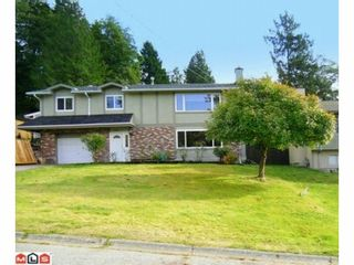 Photo 39: 10364 SKAGIT Drive in Delta: Nordel House for sale (N. Delta)  : MLS®# F1226520