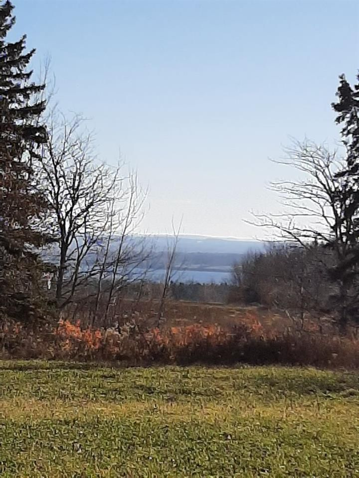 Main Photo: Scotch Hill Road in Lyons Brook: 108-Rural Pictou County Vacant Land for sale (Northern Region)  : MLS®# 202103498
