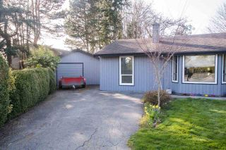 Photo 18: 4735 47 Avenue in Delta: Ladner Elementary House for sale (Ladner)  : MLS®# R2560903