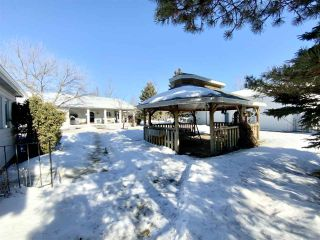 Photo 28: 16 240074 TWP RD 471: Rural Wetaskiwin County House for sale : MLS®# E4229607