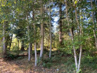 Photo 6: Lot 18 Leeming Rd in Campbell River: CR Campbell River South Land for sale : MLS®# 886448